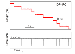 FC DPhPC 13-03-05 03
