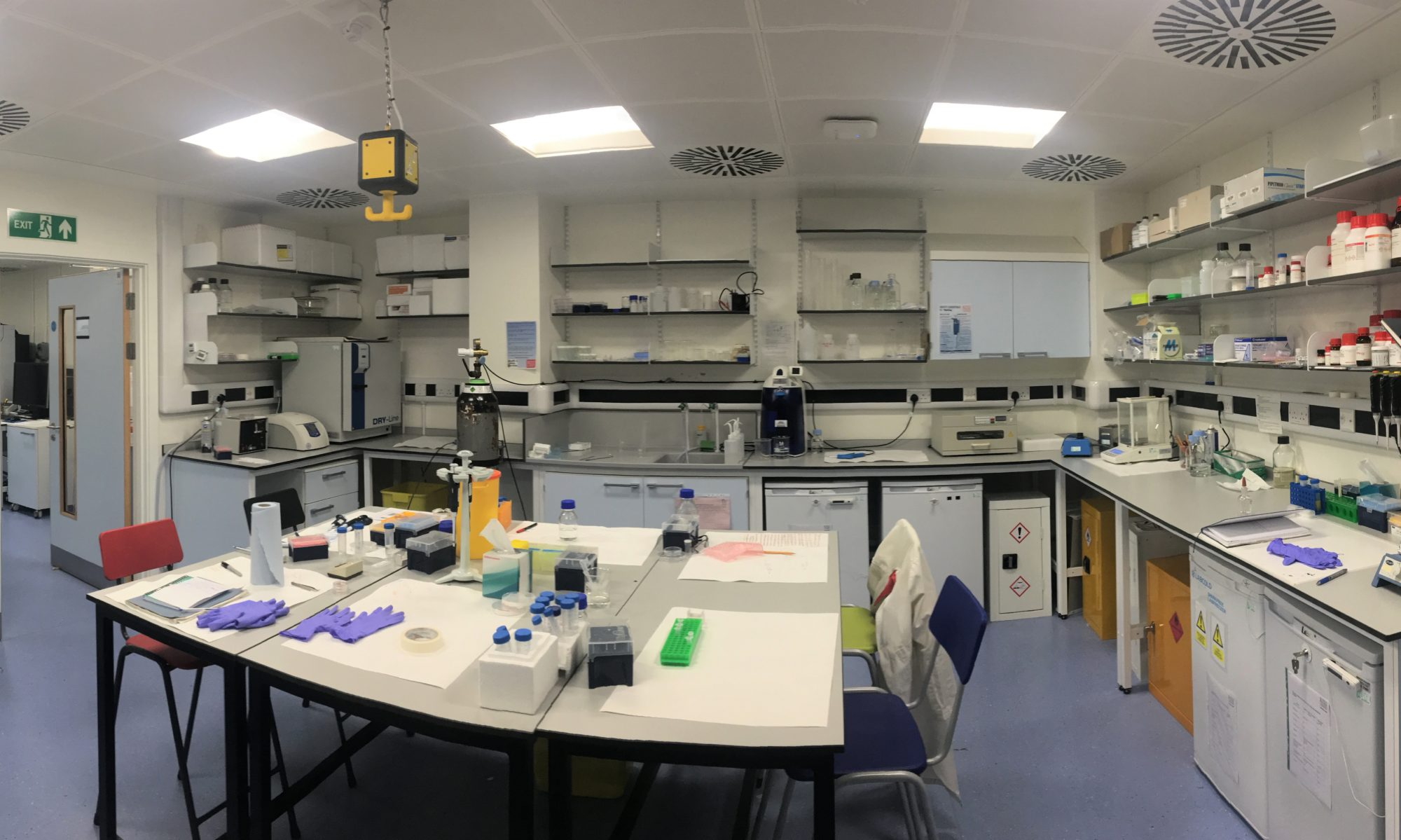 Welcome to the Garcia-Manyes  lab